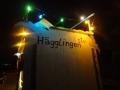 Umzug Haegglingen 35